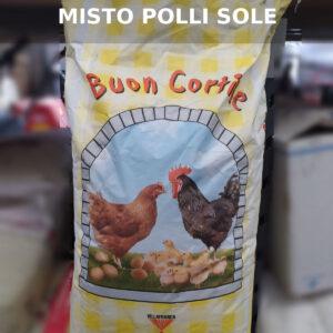 Misto Polli Sole – Buon cortile – Villafranca Fiocchi