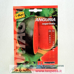 Anguria Sugar Baby