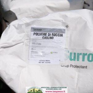 Polvere di caolino trattamento ulivi, orticoltura e frutticoltura