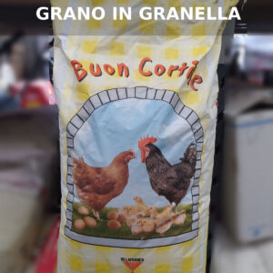 Grano in granella – Buon cortile – Villafranca Fiocchi